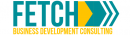 Fetch Consulting